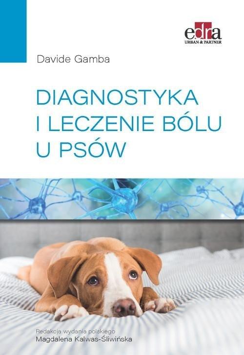Diagnostyka i leczenie bólu u psów