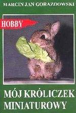 Mój króliczek miniaturowy