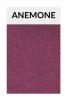 TI005 anemone
