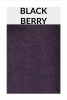 TI005 blackberry