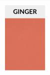 TI003 ginger
