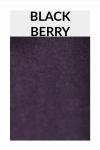 TI005 blackberry