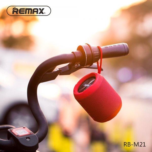 remax alexpo