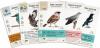 Na skrzydłach: Ptaki Europy (dodatek)