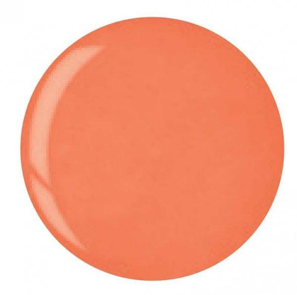 Puder do manicure tytanowy - Cuccio dip 14G -  Bright Orange (5607)
