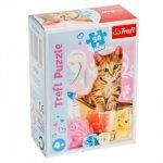 TREFL Puzzle mini 54 el. Psy i koty, Urocze pupile (19634)