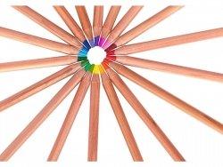 Kredki ołówkowe PRESTIGE z drewna cedrowego 24 kolory ASTRA (312117002)