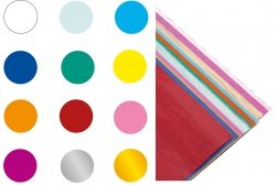 Bibuła gładka w rolce 12 kolorów 50 x 35 (56531)