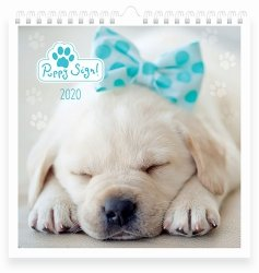 Kalendarz ścienny planszowy PUPPY SIGN 2020 Pieski i kotki (72751)