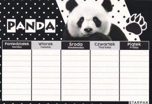 Plan lekcji STARPAK Panda (447903)