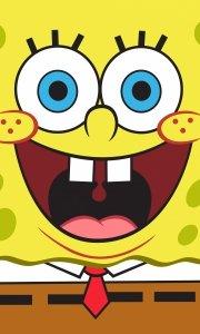 Ręcznik dziecięcy Spongebob Kanciastoporty 30 x 50 cm  (SBOB192030-R)