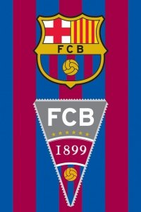 Ręcznik dziecięcy FC BARCELONA 40 x 60 cm (FCB2001)