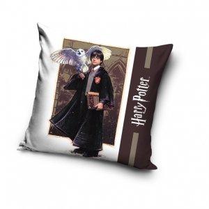 Poszewka na poduszkę  Harry Potter 40 x 40 cm (HP203020)
