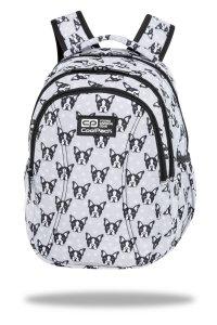 Plecak wczesnoszkolny CoolPack JOY S 21L buldogi, FRENCH BULLDOGS (C48247)