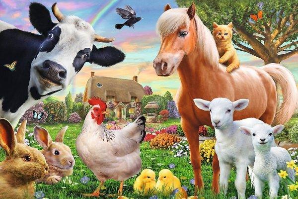 TREFL Puzzle 60 el. Wesoła farma (17320)