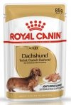 Royal Canin Dachshund Adult 12x85g