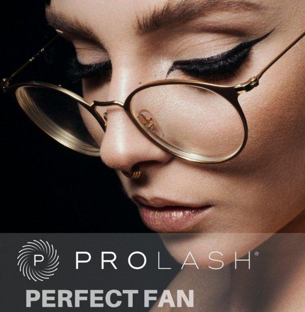 WARSZTATY PERFECT FAN - Kraków- 09.01.2021 - Joanna Wadowska- REZERWACJA - bonus - PERFECT LINE !