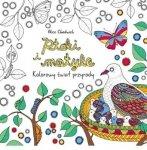 Ptaki i motyle. Kolorowy świat przyrody