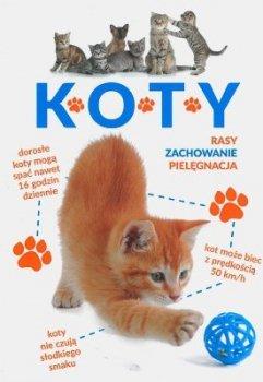 Koty. Rasy, zachowanie, pielęgnacja