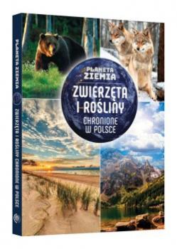 Planeta Ziemia. Zwierzeta i rośliny chronione w Polsce