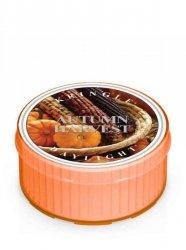 Kringle Candle - Autumn Harvest - Świeczka zapachowa - Daylight (35g)