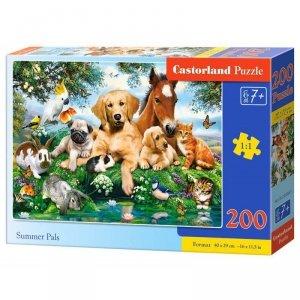 Puzzle 200 summer pals