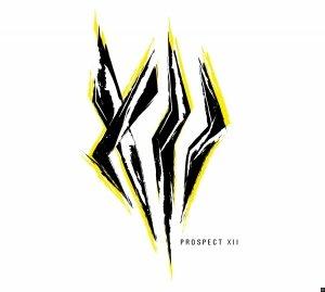 Prospect XII