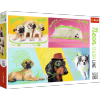 Puzzle 1000 Trefl 10578 Neon - Odlotowe Psy