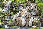 Puzzle 1000 Educa 14808 Tygrysy Bengalskie