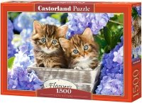 Puzzle 1500 Castorland C-151561 Słodkie Kocięta