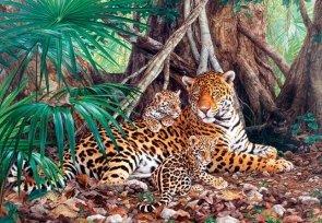 WYPRZEDAŻ - Puzzle 3000 Castorland C-300280 Jaguars in the Jungle