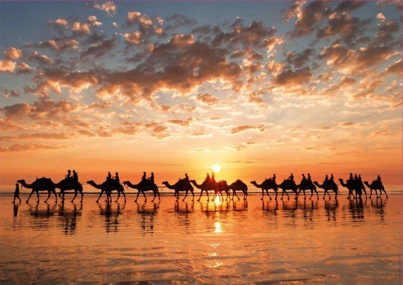 Puzzle 1000 Educa 18492 Zachód Słońca w Cable Beach - Australia