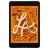 Apple iPad mini 5 64GB Wi-Fi + LTE Space Gray (gwiezdna szarość)