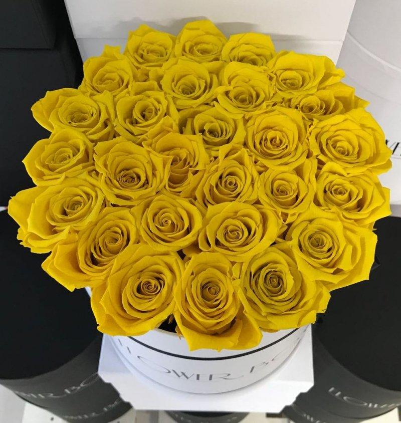 Żółte żywe WIECZNE róże w dużym białym boxie