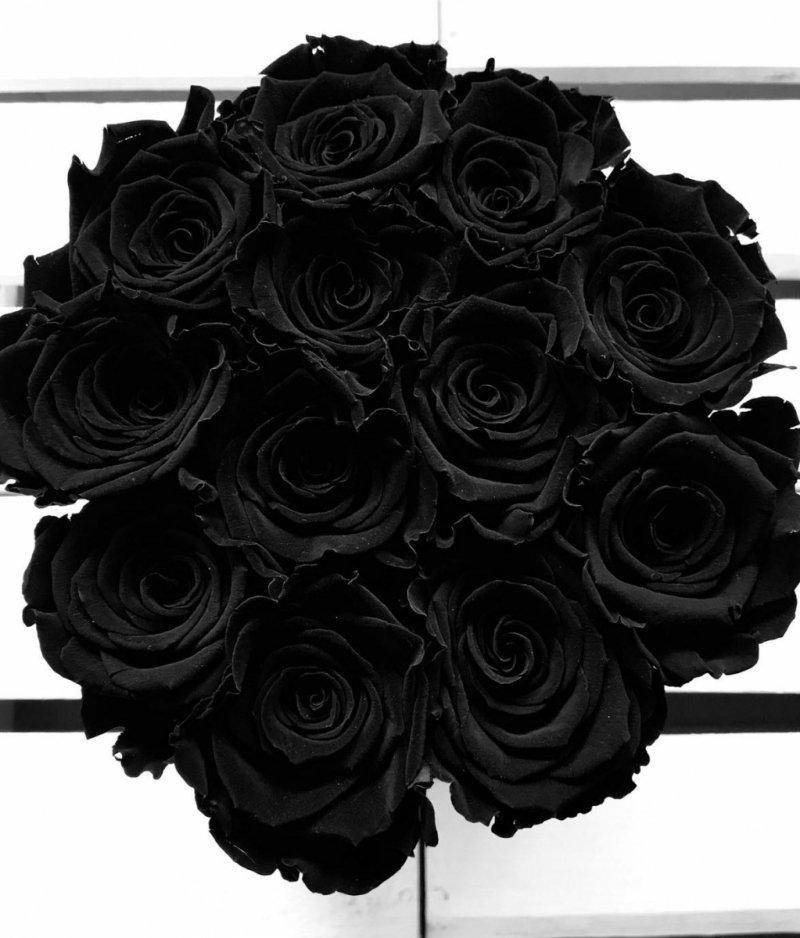 Czarne żywe WIECZNE róże w średnim czarnym boxie