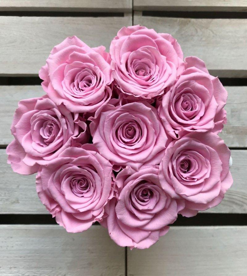 Różowe żywe WIECZNE róże w małym białym boxie