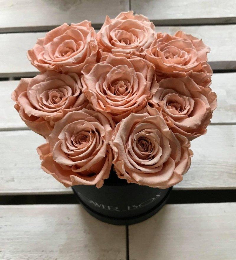 Brzoskwiniowe żywe WIECZNE róże w małym czarnym boxie