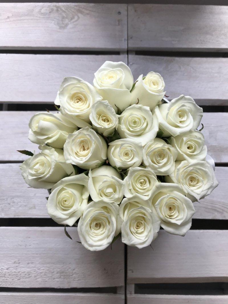 Białe żywe róże w średnim białym boxie