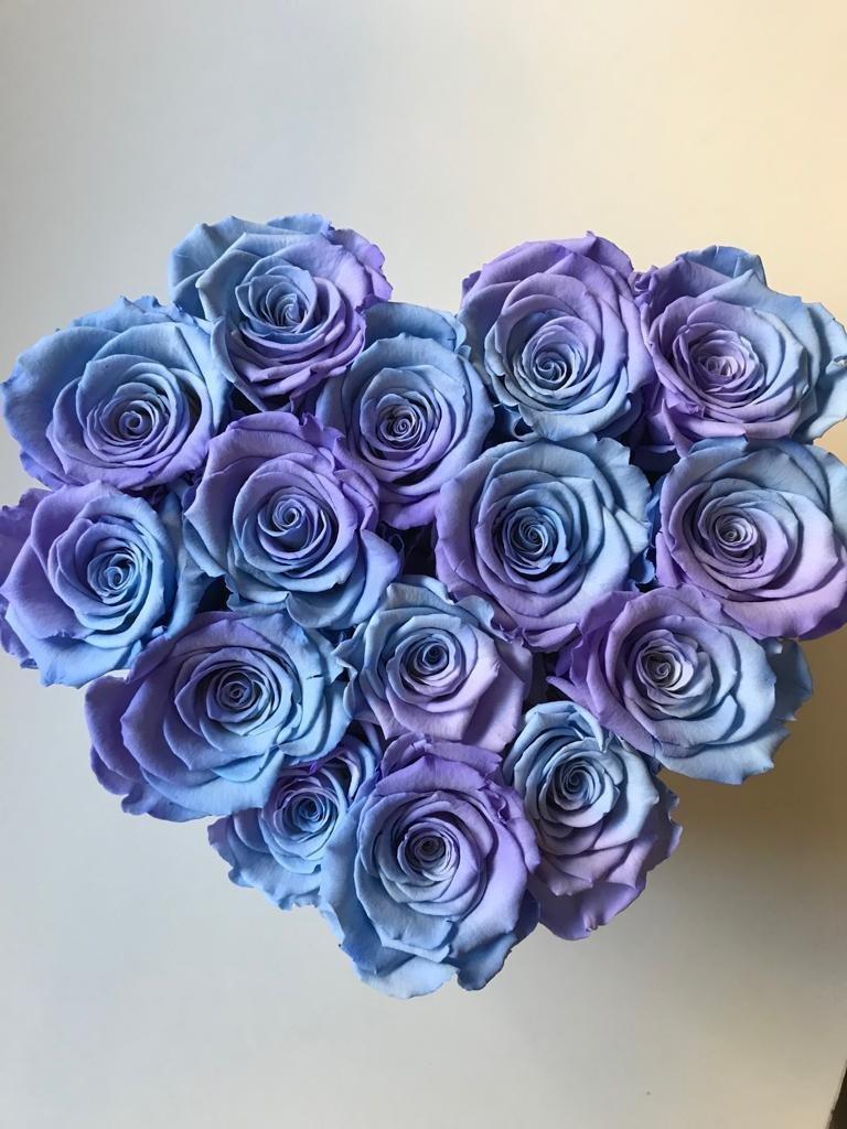 Błękitne cieniowane róże w średnim boxe heart