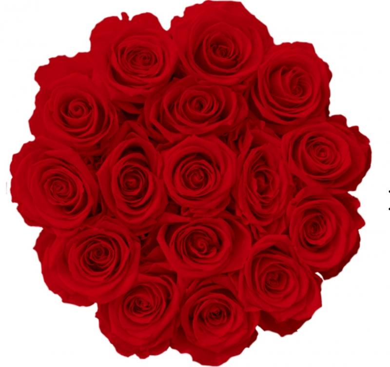 Czerwone żywe WIECZNE róże w średnim czarnym boxie