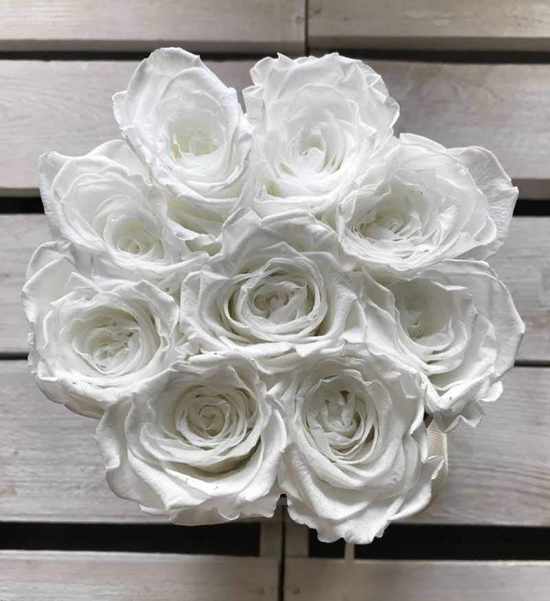 Białe żywe WIECZNE róże w małym białym boxie