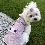 Ciepła kurtka z kożuchem SIENNA różowa dla psa