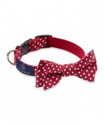 Bow Tie STREET red