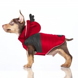 Winter coat BLITZEN red