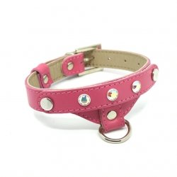 Luxurious PRESTIGE collar with Swarovski cristal - beige for small dogs