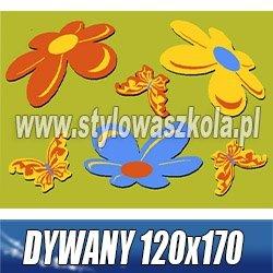 DYWANY 120x170