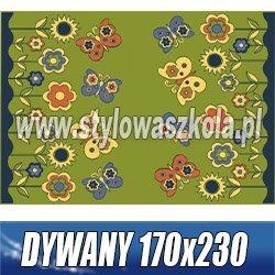 DYWANY 170X230