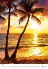 Kalendarz ścienny wieloplanszowy Tropical Beaches 2021 - sierpień 2021
