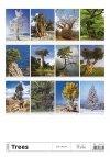 Kalendarz ścienny wieloplanszowy Trees 2021 - tylna okładka