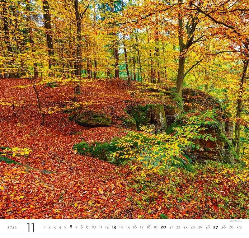 Kalendarz ścienny wieloplanszowy Forest 2022 - listopad 2022